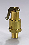 AQUATROL 570EE-MA200 Safety Valve for Series 570 1 x 1 200 psi 1 x 1